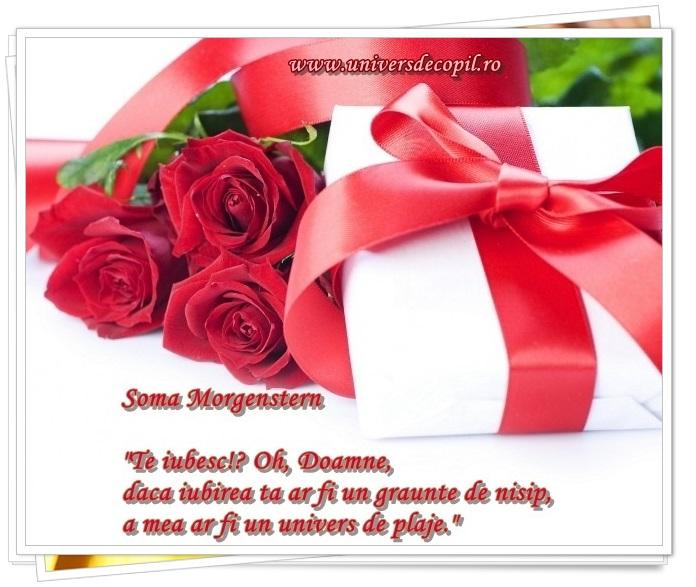 http://universdecopil.ro/images/stories/adolescenti/timp_liber/valentine_s_day_felicitari_cu_declaratii_de_dragoste/valentine%27s%20day%20felicitari%20speciale%20si%20declaratie%20de%20dragoste.jpg