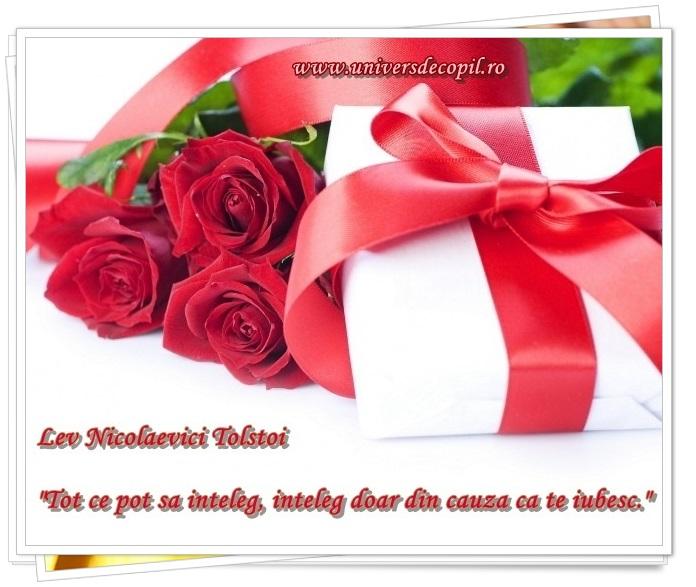 http://universdecopil.ro/images/stories/adolescenti/timp_liber/valentine_s_day_felicitari_cu_declaratii_de_dragoste/valentine%27s%20day%20te%20iubesc%20felicitare%20si%20declaratie%20de%20iubire.jpg